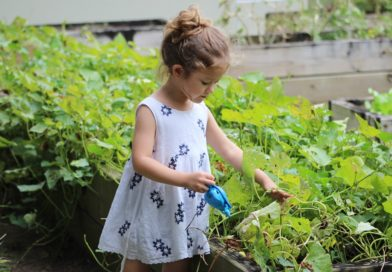 10 Best Health Benefits of Gardening at Home
